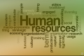 Cursuri Human Resources